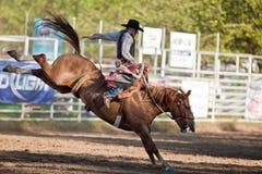 dzień nadgraniczni rodeo willits Obrazy Royalty Free