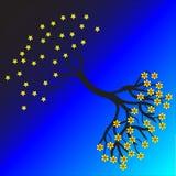 dzień noc drzewo Obrazy Royalty Free