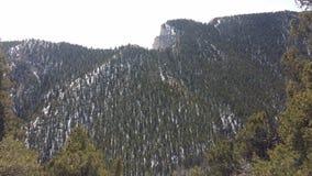 Dzień Out w Skalistych górach fotografia royalty free
