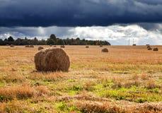 dzień pola krajobraz broguje pogodnego Zdjęcie Stock