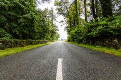 Dzień wycieczka Irlandia Zdjęcie Royalty Free