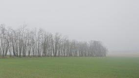 Dzień zima w francuzie Vexin Zdjęcia Royalty Free