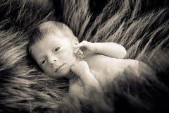 Dziecięca chłopiec jeden tydzień stary Zdjęcia Royalty Free