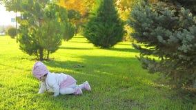 Dziecięcy czołganie wokoło w parku zbiory