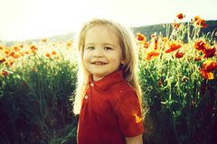 , dzieciństwo, szczęście, opia, ekologia i środowisko, pole kwiat z dzieckiem lub chłopiec zdjęcia royalty free