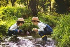 Dzieci, bawić się na małej rzece z kaczątkami Zdjęcia Stock