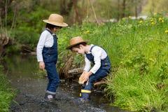 Dzieci, bawić się na małej rzece z kaczątkami Fotografia Royalty Free