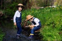 Dzieci, bawić się na małej rzece z kaczątkami Obraz Stock