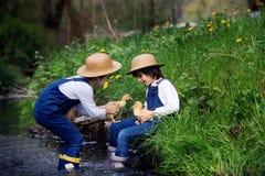 Dzieci, bawić się na małej rzece z kaczątkami Zdjęcie Stock