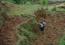 Dzieci bawić się przy wioską obraz royalty free