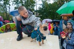 Dzieci bawić się z małymi psami 16 09 2018 Zdjęcia Royalty Free