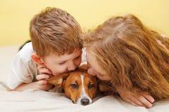 Dzieci całuje szczeniak dźwigarki Russell psa Zdjęcie Royalty Free