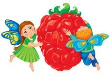 dzieci chwyta malinki czerwone Obrazy Royalty Free