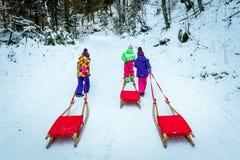 Dzieci ciągną saneczki na halnej drodze w drewnach Fotografia Royalty Free
