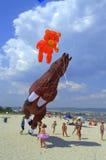 Dzieci cieszą się niedźwiadkowe i końskie kanie Zdjęcie Royalty Free
