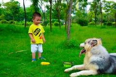 Dzieci i Collie Pasterski pies Zdjęcie Royalty Free