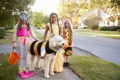 Dzieci I pies W Halloweenowych kostiumach Dla sztuczki Lub częstowania fotografia royalty free