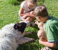 Dzieci i pies w trawie Obrazy Royalty Free