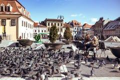 Dzieci karmi gołębie na głównym placu romanian grodzki Braso Zdjęcie Stock