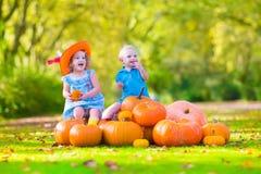 Dzieci przy dyniową łatą Obrazy Royalty Free
