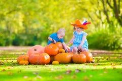 Dzieci przy dyniową łatą Zdjęcie Stock