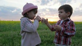 Dzieci quench pragnienie, dziecko napoje woda, dzieciaka ` s ręk chwyta szklana czysta czysta woda na zmierzch naturze, Mały Ślic zbiory wideo