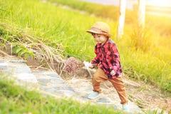 Dzieci są ubranym kapelusz i odprowadzenie na schodku Dziecko chwyta kwiat blisko drogi i zdjęcia stock