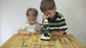 Dzieci studiują rośliny pod mikroskopem na drewnianym stole obok białej ściany zbiory