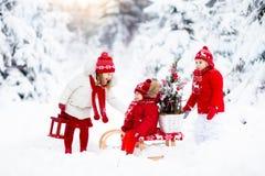 Dzieci z choinką Śnieżna zimy zabawa dla dzieciaków Zdjęcie Royalty Free