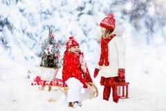 Dzieci z choinką Śnieżna zimy zabawa dla dzieciaków Fotografia Royalty Free