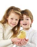 Dzieci z małym kurczakiem Fotografia Stock