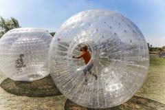 Dzieci zabawę w Zorbing piłce Zdjęcie Royalty Free