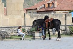 Dzieci zbliżają czarnego konia przy kamienną ścianą obrazy stock