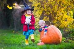 Dzieciaków częstowanie przy Halloween lub sztuczka Zdjęcie Stock