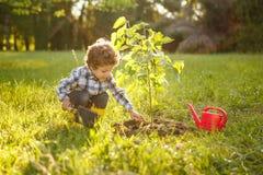 Dzieciak bierze opiekę drzewo w ogródzie Obraz Stock