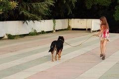 Dzieciak i pies Obrazy Royalty Free