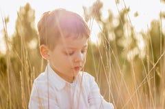 Dzieciak w polu bawić się z kolcami przy lato zmierzchem zdjęcie stock