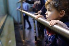 Dzieciak w zoo Obrazy Royalty Free