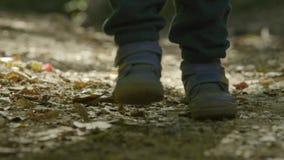 Dzieciak wolno chodzi w lasowych zbliżenie nogach zdjęcie wideo