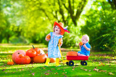 Dzieciaki bawić się przy dyniową łatą Zdjęcie Stock