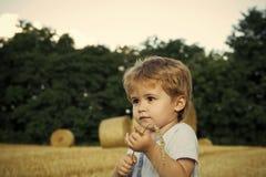 Dzieciaki bawić się - szczęśliwa gra Mały dzieciak z spikelet przy siano belą, lato Fotografia Stock