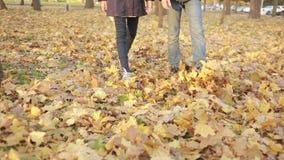 Dzieciaki bawić się w jesień parku zbiory