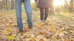 Dzieciaki bawić się w jesień parku zdjęcie wideo