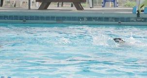 Dzieciaki bawić się w pływackim basenie zbiory