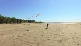 dzieciaki bawić się z kaniami na morze plaży zbiory