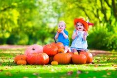 Dzieciaki bawić się przy dyniową łatą Obraz Stock