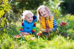 Dzieciaki bawić się w jesień lesie Zdjęcie Royalty Free