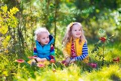 Dzieciaki bawić się w jesień lesie Obraz Royalty Free