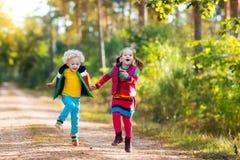 Dzieciaki bawić się w jesień parku Obrazy Stock