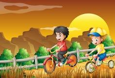 Dzieciaki jechać na rowerze przy drewnami ilustracja wektor